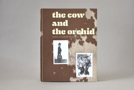 The Cow and the Orchid